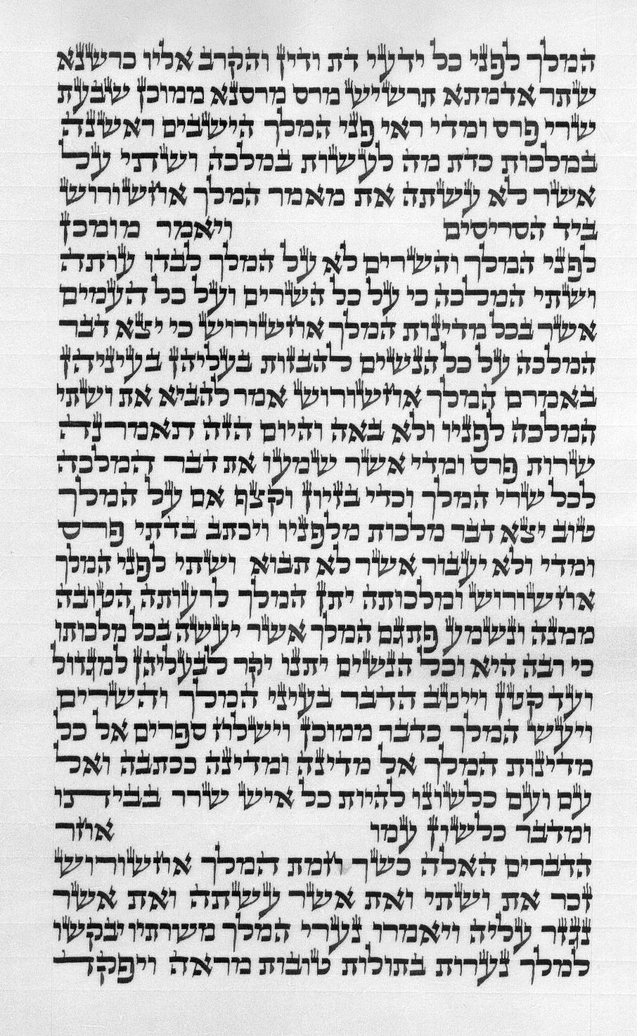 צילום קטע מגילת אסתר כא 28 עמוד ב